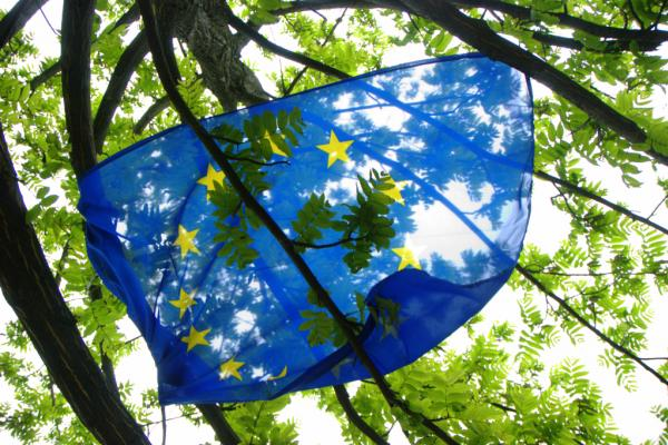 EU flag in trees