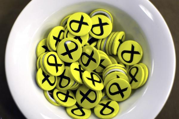 SNP numbers at Westminster